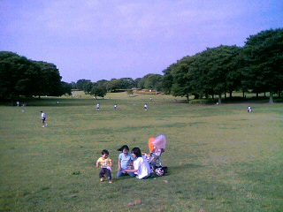 千葉市・昭和の森公園